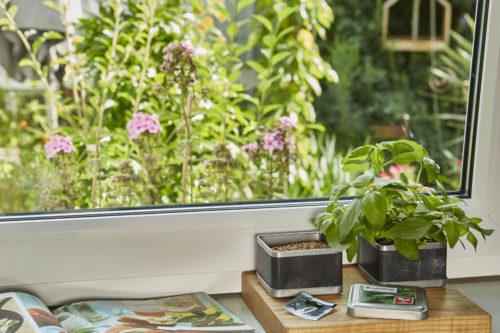Gardena - Kit plantation basilic