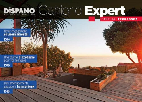 DispanoCouverture Cahier Expert Terrasses 2018-jpg
