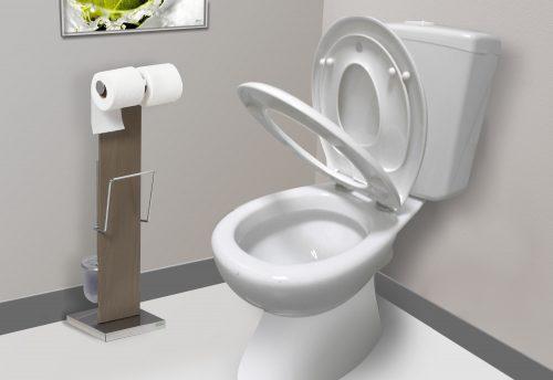 Abattant de toilette Kids.jpg