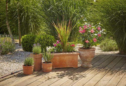GARDENA_Kit initiation plantes en pots (ambiance).jpg
