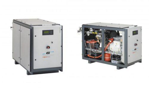 Mini cogeneration Viessmann - Cegibat-grdf-fr-jpg