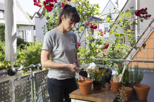 GDAKit petits outils pour balcon Jardin urbain 4-jpg